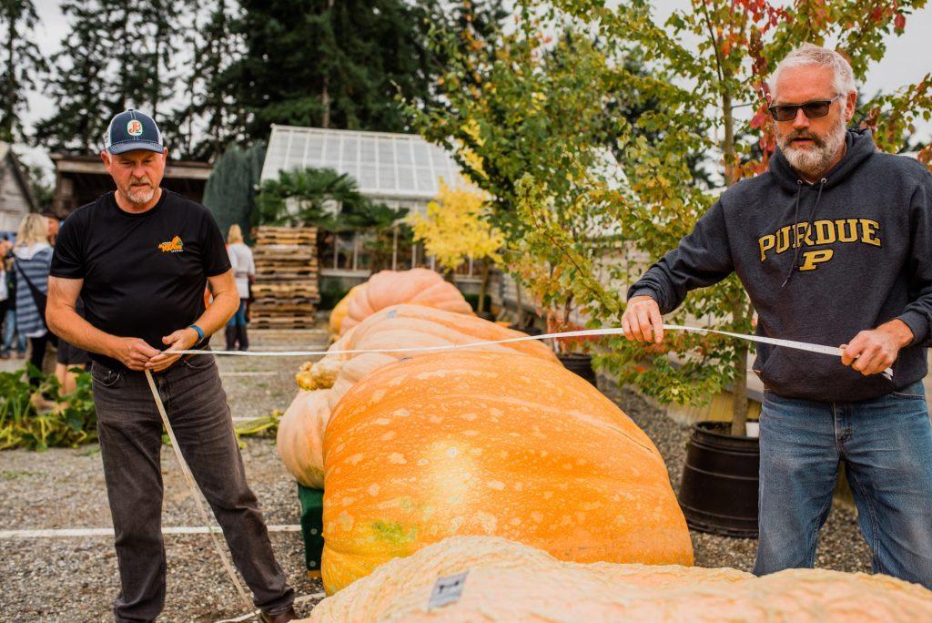 Skagit_Valley_Giant_Pumpkin_Festival