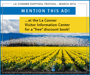 la_conner_daffodil_festival_march_2016_blog